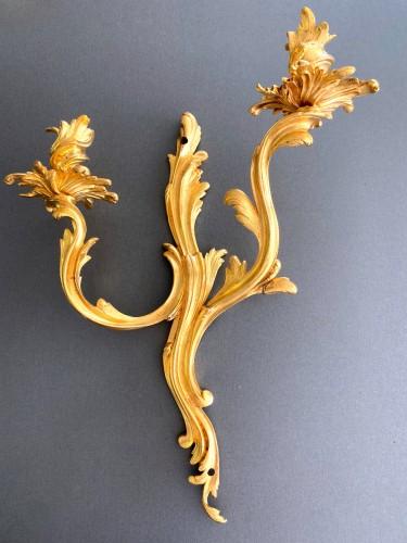 Lighting  - Pair of ormolu Louis XV sconces