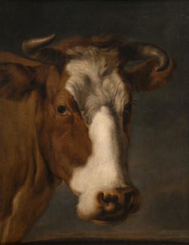 Portrait of a Cow - 17th century Dutch School
