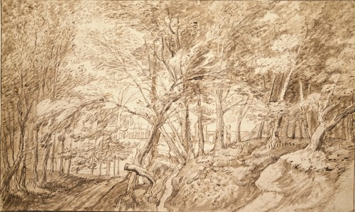Forest landscape with figure