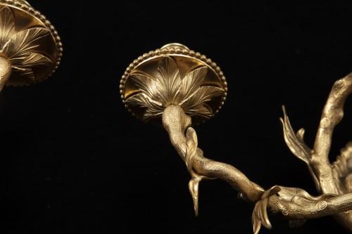 4 appliques in gilded bronze -