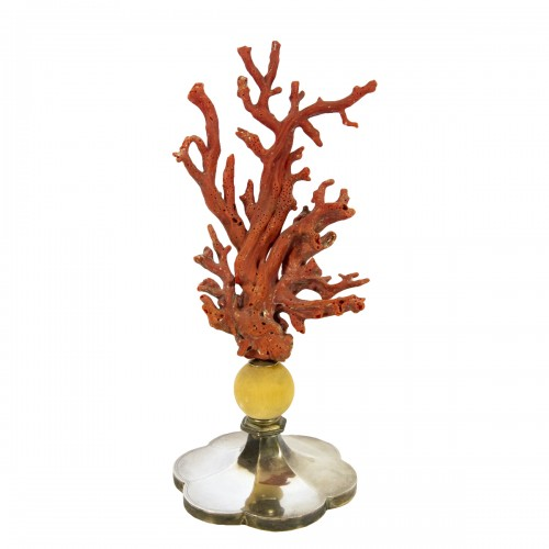 Mounted coral on Antic pedestal