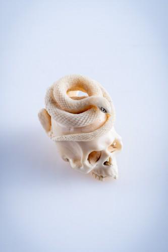 A Japanese ivory vanitas -