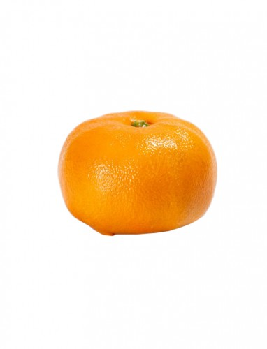 A Japanese study of a mikan