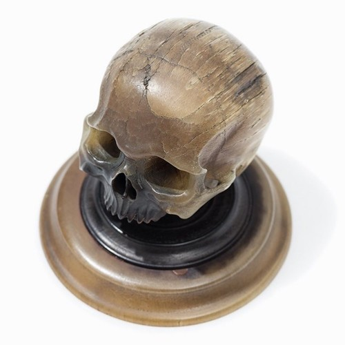 Important horn carving of a skull. German, mid 17th century. - Curiosities Style