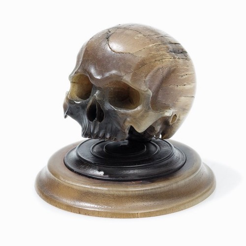 17th century - Important horn carving of a skull. German, mid 17th century.