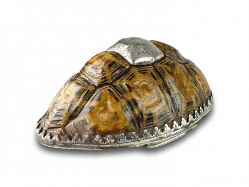 Objects of Vertu  - Silver mounted star tortoise snuff box, early 18th century
