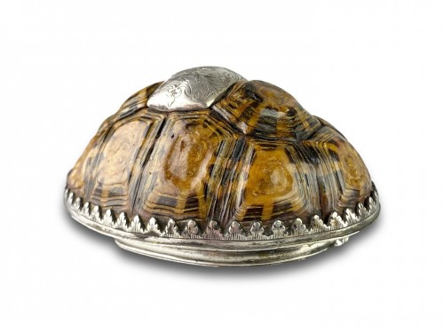 18th century - Silver mounted star tortoise snuff box, early 18th century
