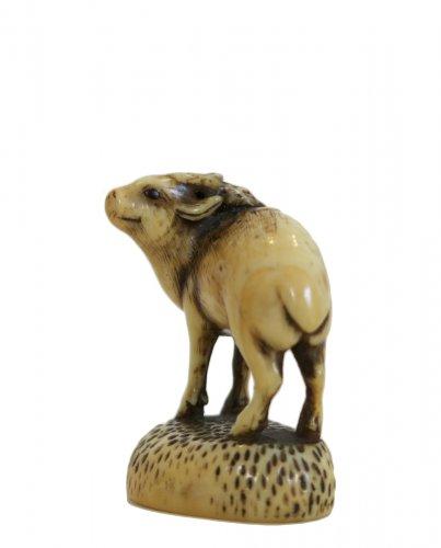 Netsuke Rantei. Deer carved, standing on his socle, Japan EDO