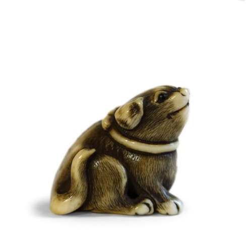 Netsuke of a small dog, Masatomo, Japan Edo 18th century