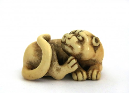 Netsuke of a tiger, crouching, on ivory. Japan Edo