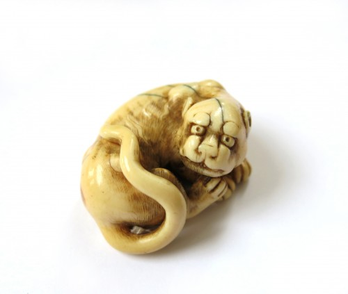Netsuke of a tiger, crouching, on ivory, Japan Edo 18th -