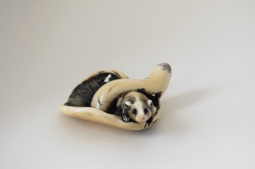 NETSUKE Squirrel on a mushroom. Japan Edo 18th century -