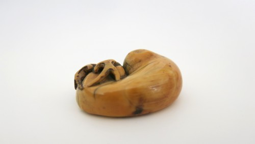 Asian Art & Antiques  - NETSUKE – A charming model of a sleeping stag Japan Edo 18th century