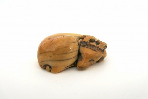 18th century - NETSUKE – A charming model of a sleeping stag Japan Edo 18th century