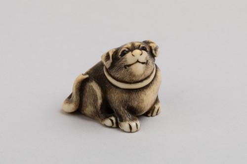 Netsuke by Masatomo - lovely model of a small dog, Japan Edo - Asian Works of Art Style