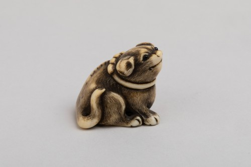 Asian Works of Art  - Netsuke by Masatomo - lovely model of a small dog, Japan Edo