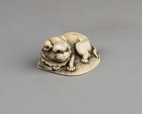NETSUKE – Puppy lying on the carpet. Japan Edo 18th century - Asian Works of Art Style