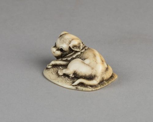 NETSUKE – Puppy lying on the carpet. Japan Edo 18th century -