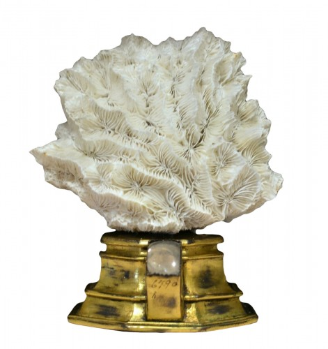 16th century gilt reliquary base with modern white coral