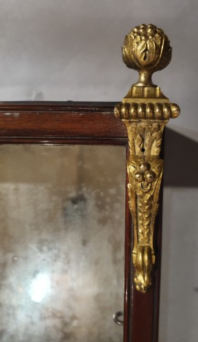 Furniture  - small wall display case - 19th century
