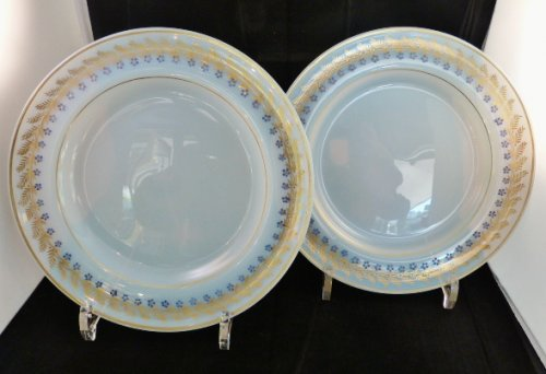 Pair of plates in opaline bubble of soap