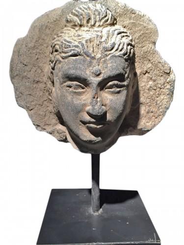 Head of the Buddha (Gandhara, 2nd-4th century AD)