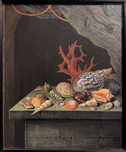 A shell and coral still-life - Elisabeth Christina Matthes (1749-1808) - Paintings & Drawings Style
