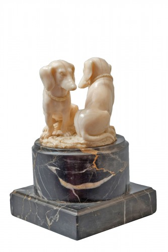 Group of ivory dachshunds