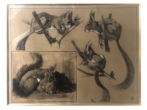 Squirrel studies - Mathurin MEHEUT (1882-1958)