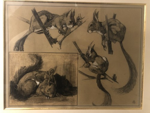 Squirrel studies - Mathurin MEHEUT (1882-1958) - Paintings & Drawings Style